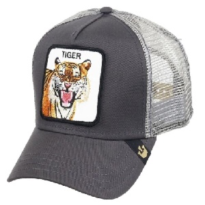 Gorra Goorin Bros 101-0335 eye of the tiger gry osfa G-251